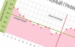 Бт при беременности до задержки