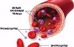 Повышены тромбоциты при беременности