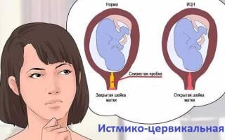 Длина шейки матки при беременности норма